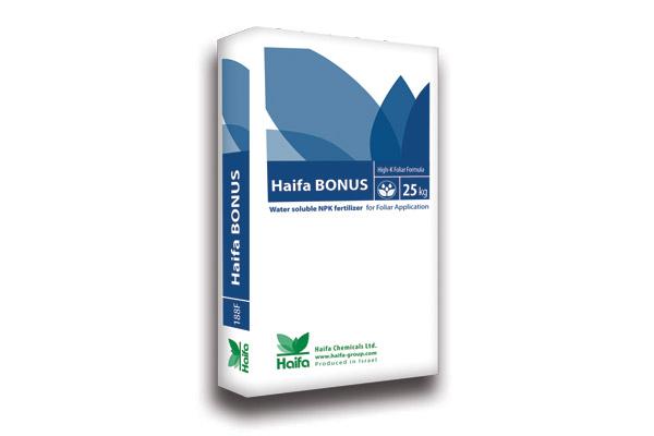 haifa-bonus