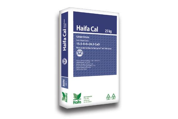 haifa-cal