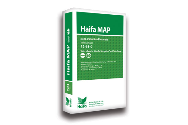 haifa-map