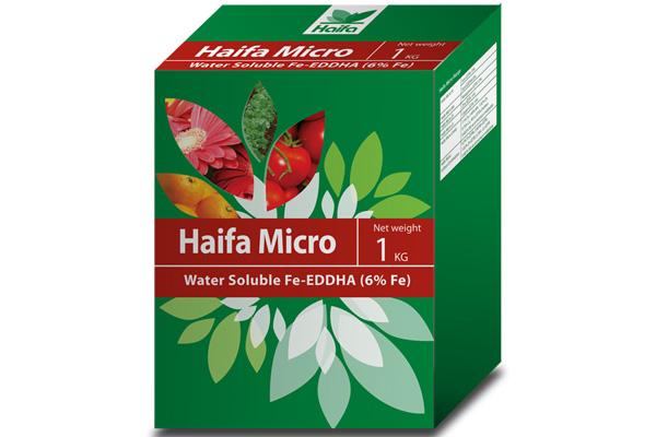 haifa-micro