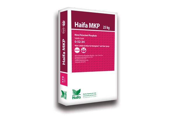 haifa-mkp