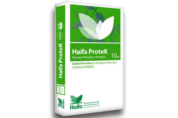 haifa-protekt