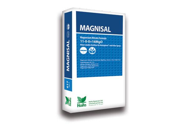 magnisal