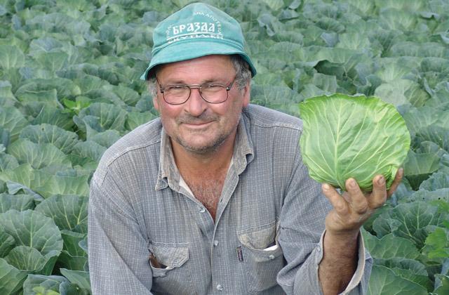 sveze-povrce2
